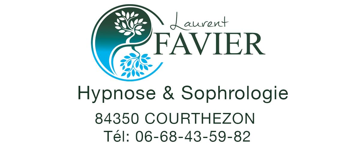 Laurent FAVIER